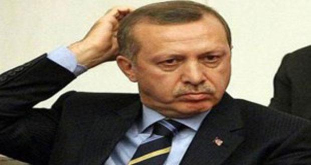 موقع تشيكي: تركيا تحولت في ظل نظام أردوغان إلى دولة عدوانية
